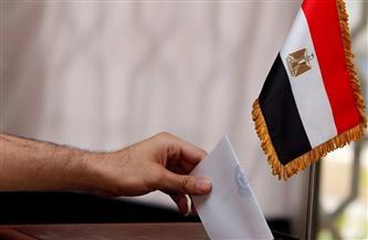 """بالأسماء.. الفائزون الخمسة بإعادة انتخابات """"النواب"""" في الإسماعيلية"""