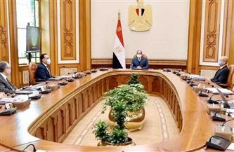 الرئيس السيسي يوجه بالاستمرار في دعم الصناعة الوطنية كنهج إستراتيجي ثابت للدولة