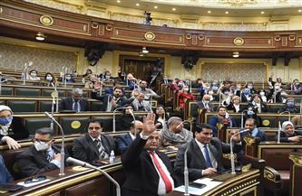 مجلس النواب يوافق على قرض جامعة الملك سلمان