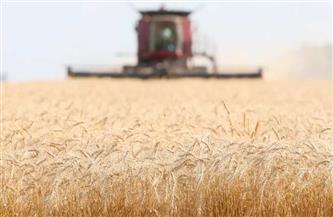 «السلع التموينية» تتعاقد على شراء 235 ألف طن قمح روماني وأوكراني