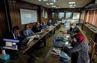 تعاون «مصري - برازيلي» في مجال تحسين سلالات الماشية