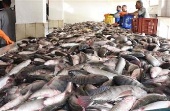 سوق العبور يفتح أبوابه للجمهور.. أسعار الأسماك اليوم الإثنين 17 مايو 2021