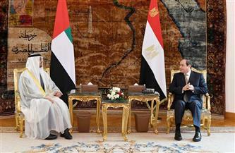 الرئيس السيسي وولي عهد أبو ظبي يتوافقان على مواصلة التصدي لتهديدات أمن واستقرار المنطقة| صور