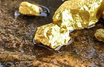 ضبط 11 شخصا بحوزتهم 6 أطنان أحجار يشتبه في احتوائها على خام الذهب بمرسى علم
