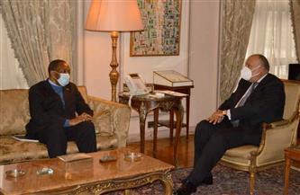 وزير الخارجية يبحث سُبُل دعم مصر للرئاسة الكونغولية المقبلة للاتحاد الإفريقي