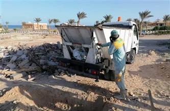 الانتهاء من دفن دولفين نافق عثر عليه بأحد شواطئ الغردقة | صور
