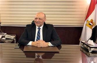 أبو العطا: مصر والإمارات القلب النابض للأمة العربية