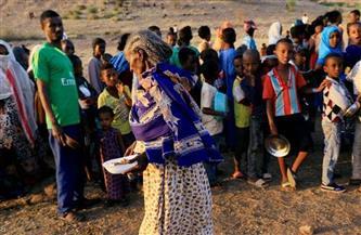 الجبهة الثورية بالسودان تدعم القوات المسلحة.. وتدين الاعتداءات الإثيوبية