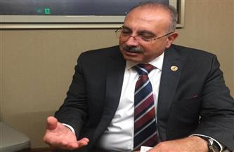 """نائب كندي: حملة """"اتكلم عربي"""" حجر أساس للتواصل مع الجيل الثاني من المصريين بالخارج"""