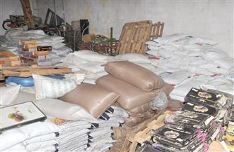 ضبط 63 طن سلع غذائية فاسدة وتحرير 26 مخالفة نقص اشتراطات صحية بالغربية