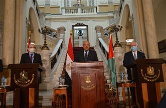توصيات بيان القاهـرة بشأن القضية الفلسطينية| فيديو جراف