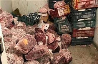 ضبط 145 كيلو لحوم ودجاج فاسدة قبل بيعها لمواطني سوهاج