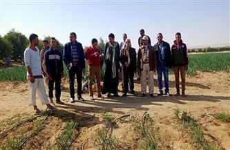 تنفيذ 10 مدارس حقلية جديدة لتوعية المزارعين والمربين | صور
