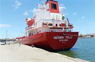تداول 22 سفينة حاويات وبضائع إجمالى الحركة بموانئ بورسعيد | صور