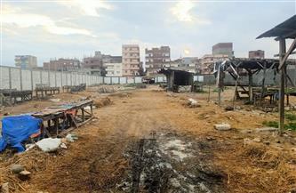 لمواجهة الموجة الثانية لكورونا.. إغلاق سوق للماشية و11 منشأة بالإسكندرية | صور