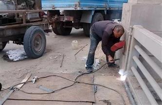 نائب محافظ الغربية: غلق فتحات كوبري المعاهدة بكفرالزيات لحين الانتهاء من أعمال الصيانة |صور