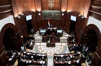 نائب بالشيوخ: تطوير القرى المصرية سيغير وجه الريف