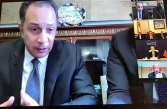 السفارة المصرية في بكين تنظم اجتماعا افتراضيا حول سد النهضة  صور