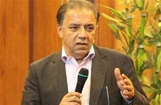 """""""لجنة إفريقيا"""" تبحث الفرص الاستثمارية والتجارية بين مصر وزامبيا"""