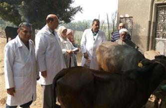 قوافل بيطرية وعلاجية بقرية هور بمركز ملوي بالمنيا