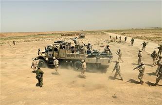 العراق: مقتل 12 عنصرا من داعش غربي مدينة الموصل