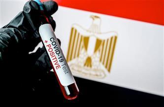 برلماني: حصول مصر على المركز الأول إفريقيا في الاستثمارات الأجنبية دليل على نجاحها في التعامل مع كورونا