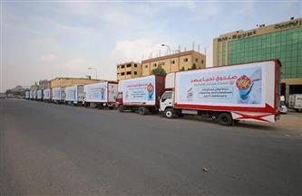 3 أرقام قياسية بالمساعدات الإنسانية.. جهود «تحيا مصر» في الدعم الاجتماعي 2020