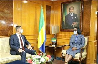 سفير مصر في الجابون يبحث سبل التعاون فى بعض المشروعات | صور