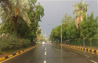 محافظة الجيزة: غلق جزئي لشارع النيل لتركيب منظومة مراقبة الحافلات السياحية بالكاميرات