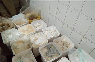 ضبط 45.5 طن جبن فاسد قبل بيعها للمواطنين في الإسكندرية