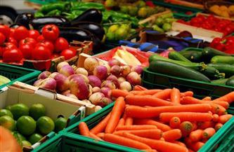 تعرف على أسعار الخضراوات اليوم  الجمعة 25 - 12 -2020