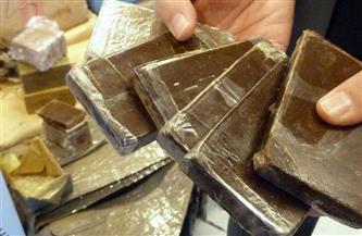 ضبط كميات من المخدرات بحوزة عنصرين إجراميين في حملة أمنية بالإسماعيلية
