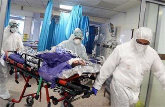 هولندا: 878 ألفا و443 إصابة بكورونا والوفيات 12 ألفا و406