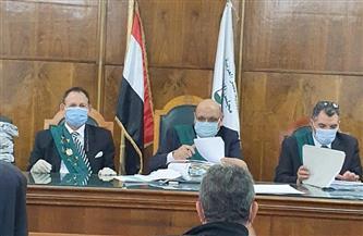 «الإدارية العليا» تحظر العمل السياسي في الوظيفة العامة