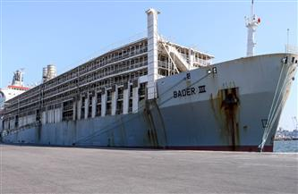تصدير  9170 طن يوريا و 1610 أطنان جبس من ميناء دمياط