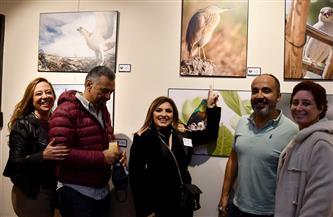 افتتاح المعرض الأول لصور الطيور المهاجرة إلى مصر | صور