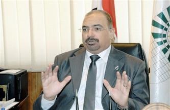 """رئيس """"التخطيط القومي"""" لـ""""بوابة الأهرام"""": """"كورونا"""" أثبتت تنوع اقتصاد مصر..ونتبنى تعميق التصنيع المحلي"""
