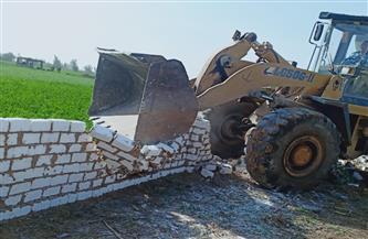 محافظ الشرقية: إزالة 13 حالة تعد على الأراضي الزرعية