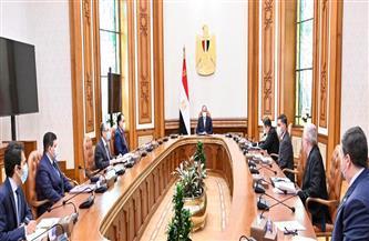 الرئيس السيسي: نتطلع إلى محطة الضبعة كصرح جديد يضاف لإنجازات التعاون المصري الروسي