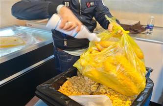 إعدام 37 طن مخللات وأغذية متنوعة بالدقهلية استعدادًا لاحتفالات رأس السنة  صور