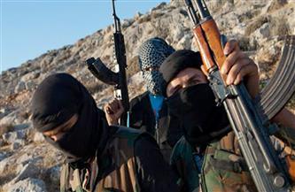 """""""الناصريون المرابطون"""" في لبنان: عصابات الإخوان المتأسلمين يرتكبون المجازر في ليبيا برعاية تركيا"""