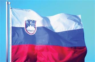 إغلاق محطة نووية في سلوفينيا وقائيا جراء الزلزال في كرواتيا