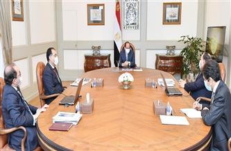الرئيس السيسي يتابع جهود الدولة لدعم أنشطة المشروعات المتوسطة والصغيرة ومتناهية الصغر|صور