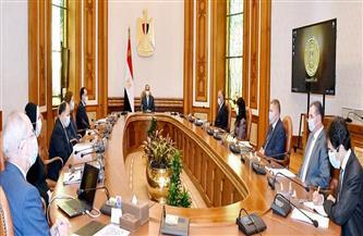 الرئيس السيسي يستعرض إطار عمل المنطقة الاقتصادية لقناة السويس وتطور رقمنة النظام المصرفي بالدولة   صور
