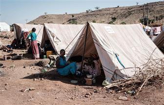 قوافل الإغاثة تتجه إلى شمال إثيوبيا واللاجئون يروون معاناتهم مع الحرب فى تيجراى
