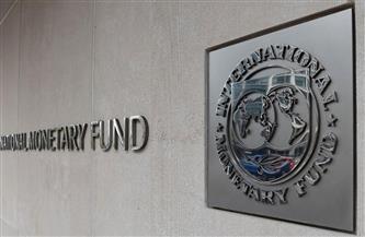 بتمويل قطري.. هيومان رايتس تحرض صندوق النقد الدولي على وقف دفعات القرض لمصر
