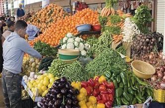 ارتفاع اليوسفي والبرتقال .. أسعار الخضراوات واستقرار الفاكهة اليوم الإثنين 1 مارس 2021