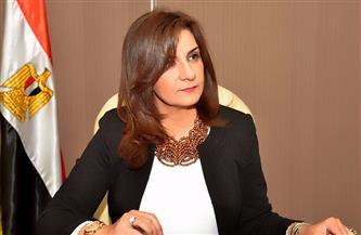 رغم تحديات كورونا.. «الهجرة» تنجح في مد جسور التواصل بين المصريين بالخارج والوطن