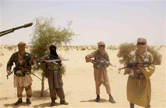 طرح رؤية مصر لمكافحة الإرهاب.. أهم أولويات وزارة الخارجية خلال ٢٠٢٠