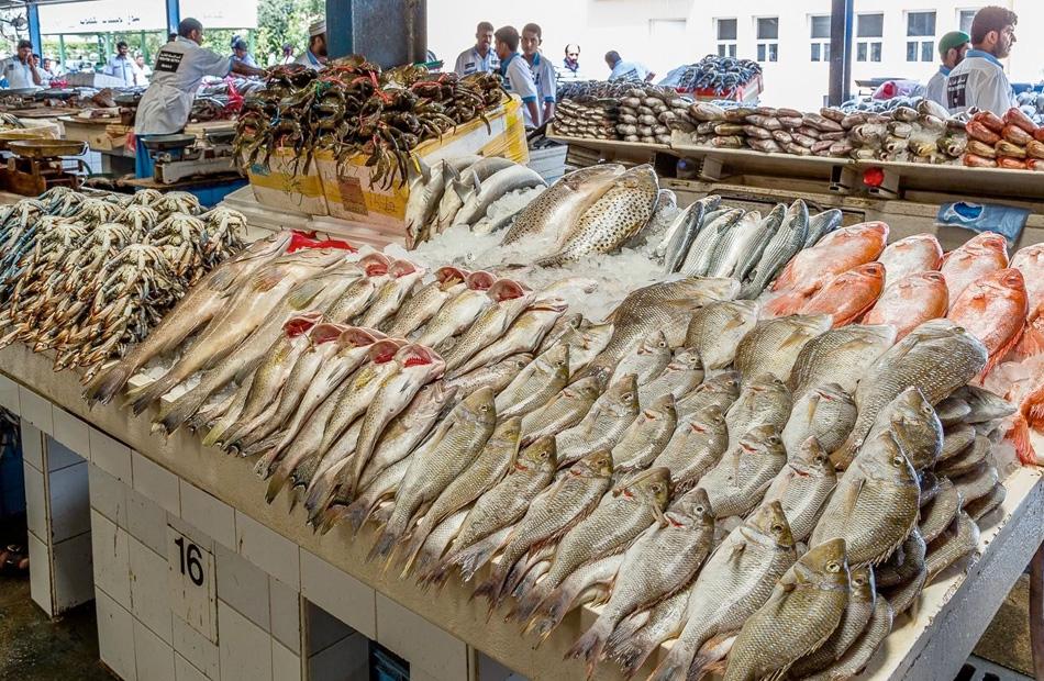 أسعار السمك اليوم الجمعة
